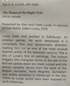 Label for The Shape of the Night